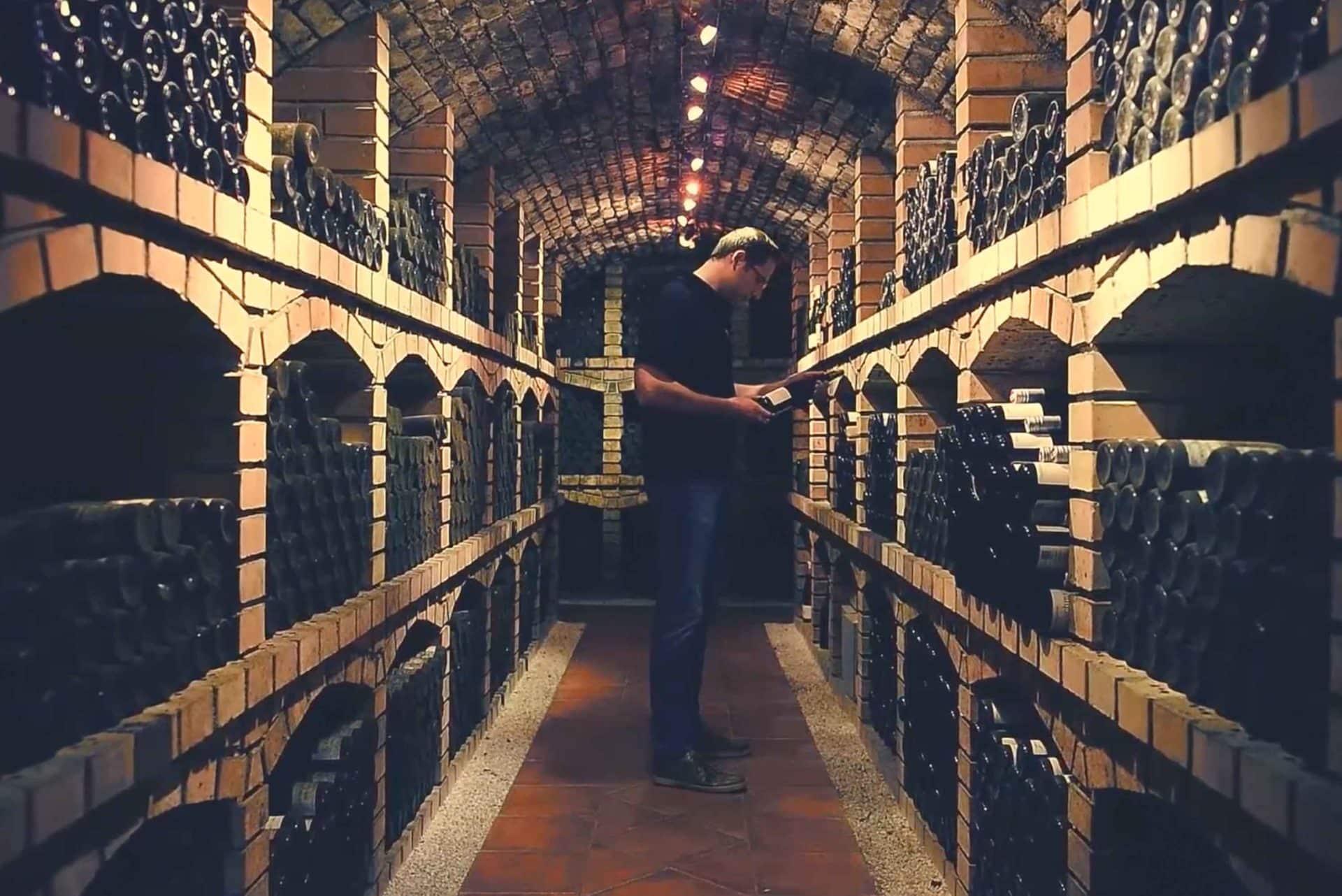 Johannes Hofbauer-Schmidt in Kellergewölbe mit vielen Weinflaschen