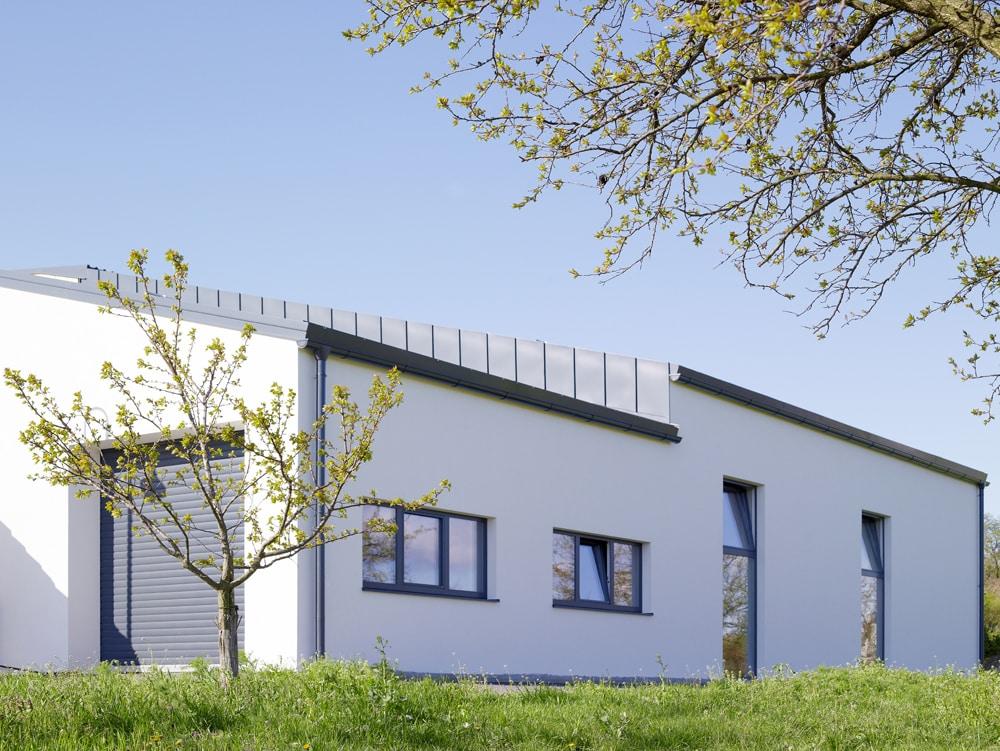 Weißes modernes Gebäude mit Bäumen